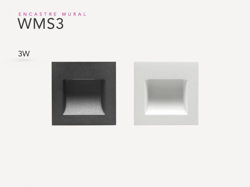 Presentation WMS3