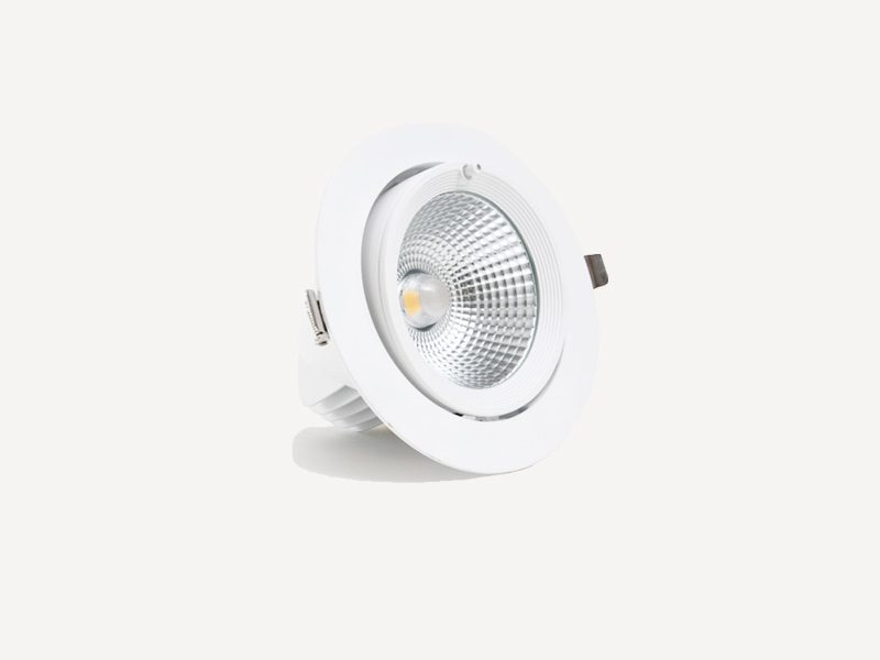 LDSR30 eclairage-interieur-led DOWNLIGHT LED 30W relamping