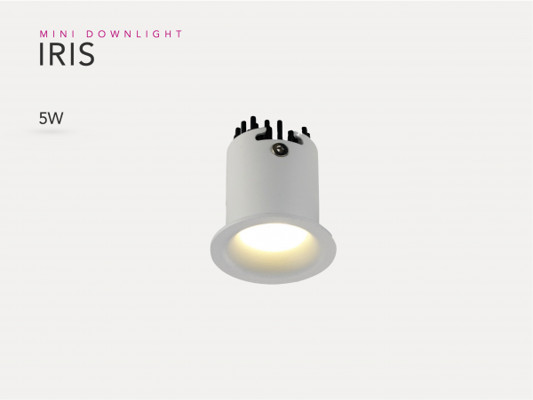 MINI DOWNLIGHT IRIS